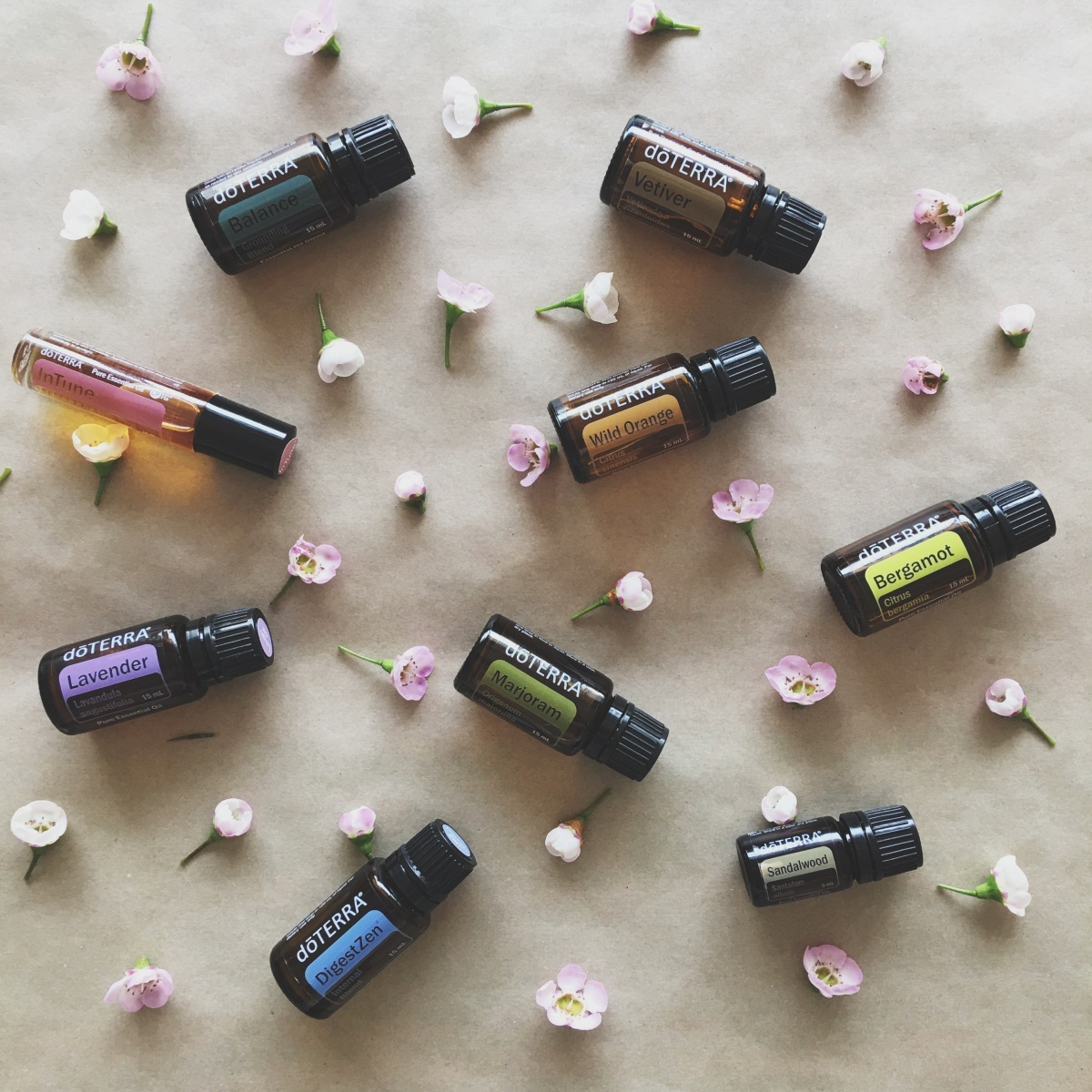 OILS FOR ANXIETY